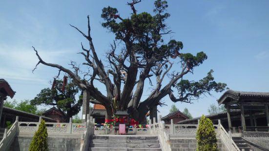 Qinbai Sceneic Area