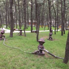 Linhai Park User Photo