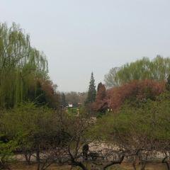 Hongguang Park User Photo