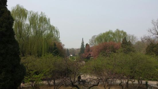Hongguang Park