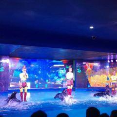 Dream Aquarium User Photo