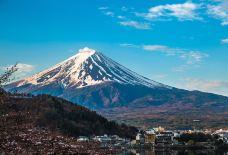 富士山-尊敬的会员