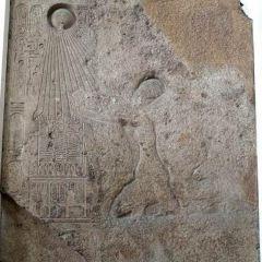 阿瑪達考古博物館用戶圖片