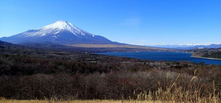 箱根國立公園1