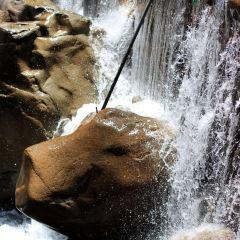 天目大峽谷用戶圖片