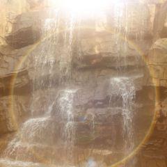黃山醉溫泉用戶圖片