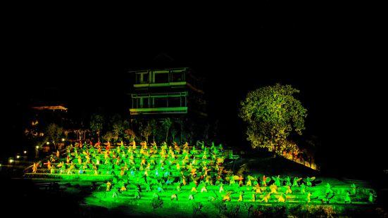 """""""Impression Da Hong Pao"""" performance"""