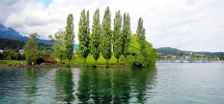 琉森盧塞恩湖遊船3