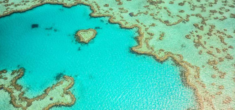 Heart Reef3