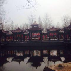 姜堤樂園用戶圖片