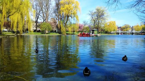 波士頓公園