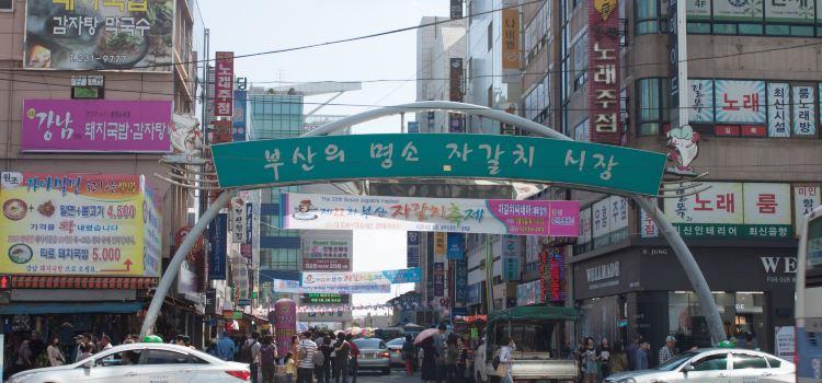 Sapporo Market Sashimi Department