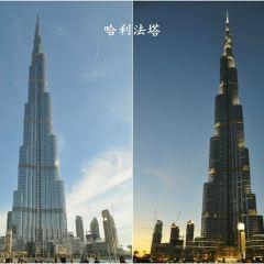 Ostankino Television Tower User Photo