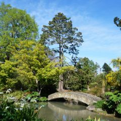 Christchurch Botanic Gardens User Photo