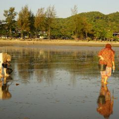 Noppharathara Beach User Photo