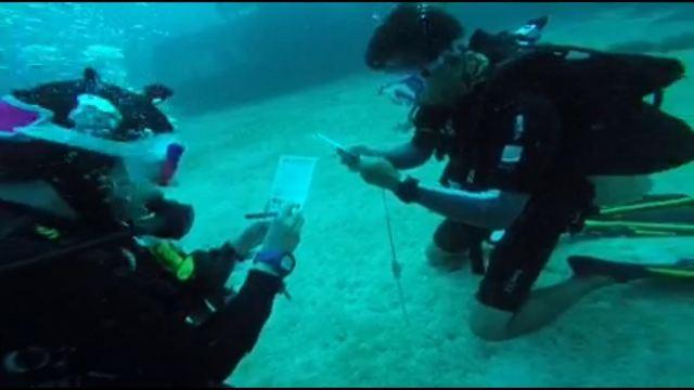 論,一個戶外女生如何中上藍毒 l 馬來仙本那之遊記攻略 and 考潛水證