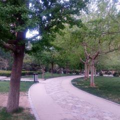 石門公園用戶圖片