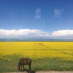 Qinghai Lake Erlangjian Scenic Area User Photo