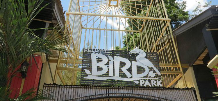 Phuket Bird Park1