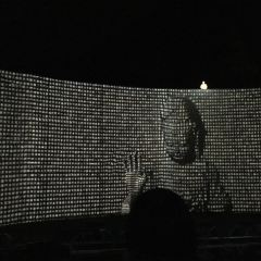 《印象普陀》演出用戶圖片