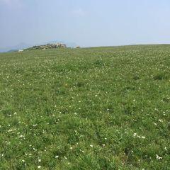 Feihu Valley · Grassland in the Sky User Photo
