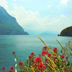 伊澤歐湖用戶圖片
