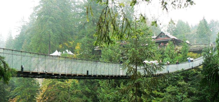 卡佩蘭奴吊橋公園2