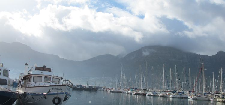 Hout bay Harbour2