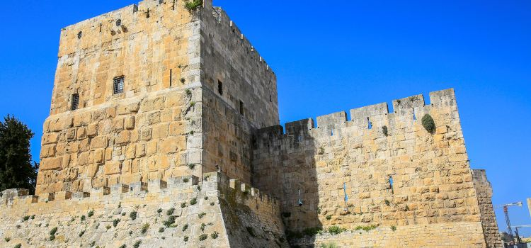 다윗왕의 가묘1