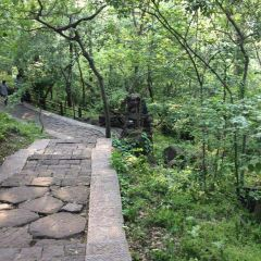 Tieshan Temple National Forest Park User Photo