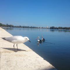 Swan River User Photo