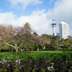 Auckland Domain User Photo