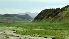 石门沟草原公园-武威-是条胳膊
