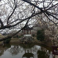 Xishan Island User Photo
