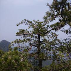 Wushan Scenic Area User Photo