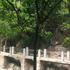 Taishan Fenghuangxia Xiaojiuzhai User Photo