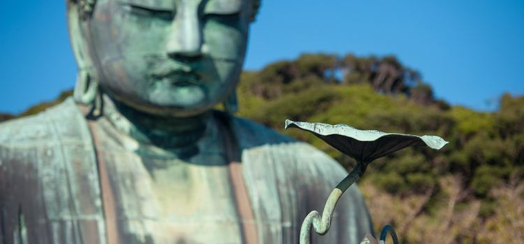 Kotokuin Great Buddha of Kamakura3