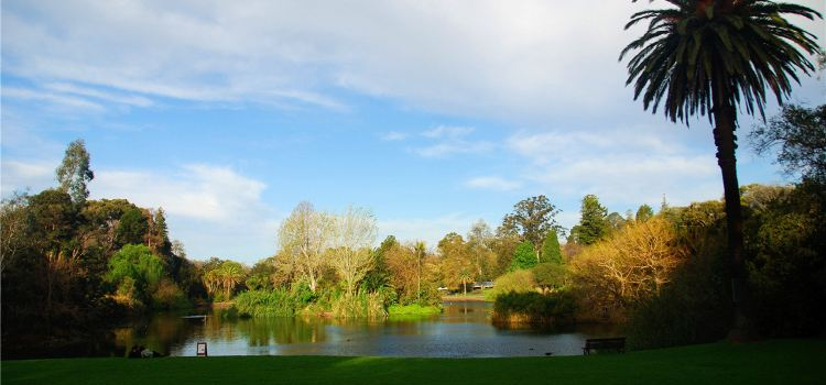 Royal Botanic Gardens Melbourne1