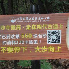 Dayangshan National Forest Park User Photo