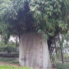 成都東門城牆遺址用戶圖片
