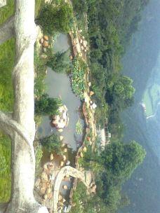 云阳国家森林公园-茶陵-D97****42