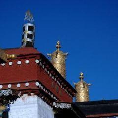 功德林寺用戶圖片