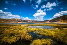 阿尔山国家森林公园-阿尔山-doris圈圈