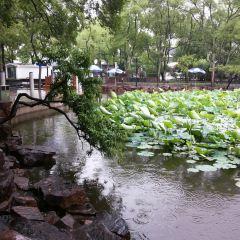 Suzhou Park (West Gate) User Photo