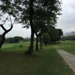 Noble Merchant Golf Club User Photo