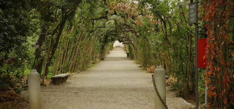 波波里花園1