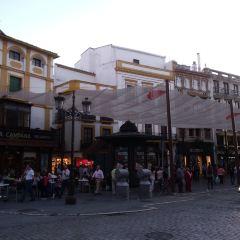 Seville User Photo