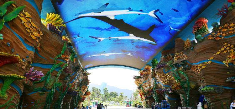 Zhuhai Chimelong Ocean Kingdom1