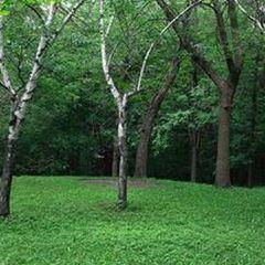 呂貝龍地質公園用戶圖片