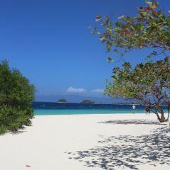 Banana Island User Photo